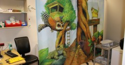 Tree Hutt Curtains in Hutt Hospital ED